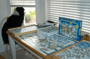 Puzzling_val